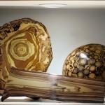 *Musee Gourmand du chocolat_Espace matiere-Leroux 20